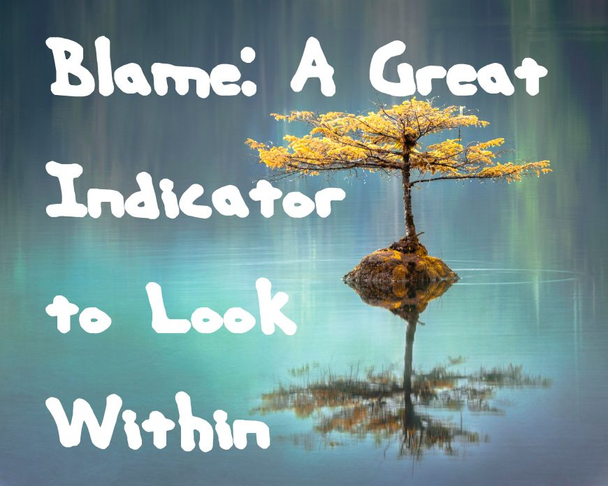 Blame: A Great Indicator to Look Within